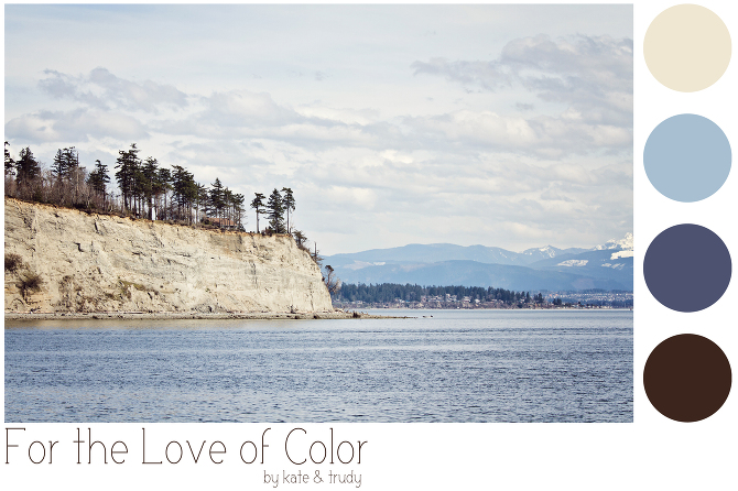 Shades of blue and brown color palette based on puget sound washington near everett
