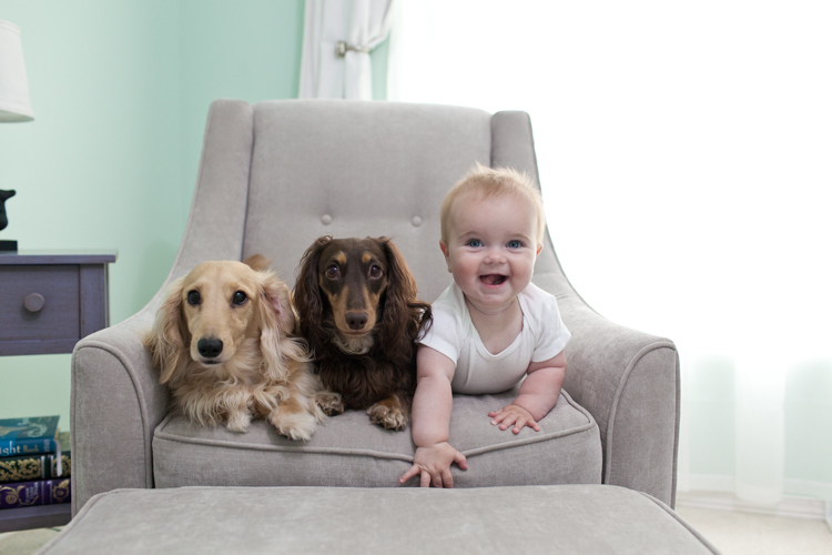 2016-07-23_dagny-7-months-with-dogs_blog